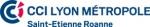 logo_CCI-Lyon-Metropole-Saint-Etienne-Roanne.jpg