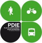 Logo PDIE.jpg